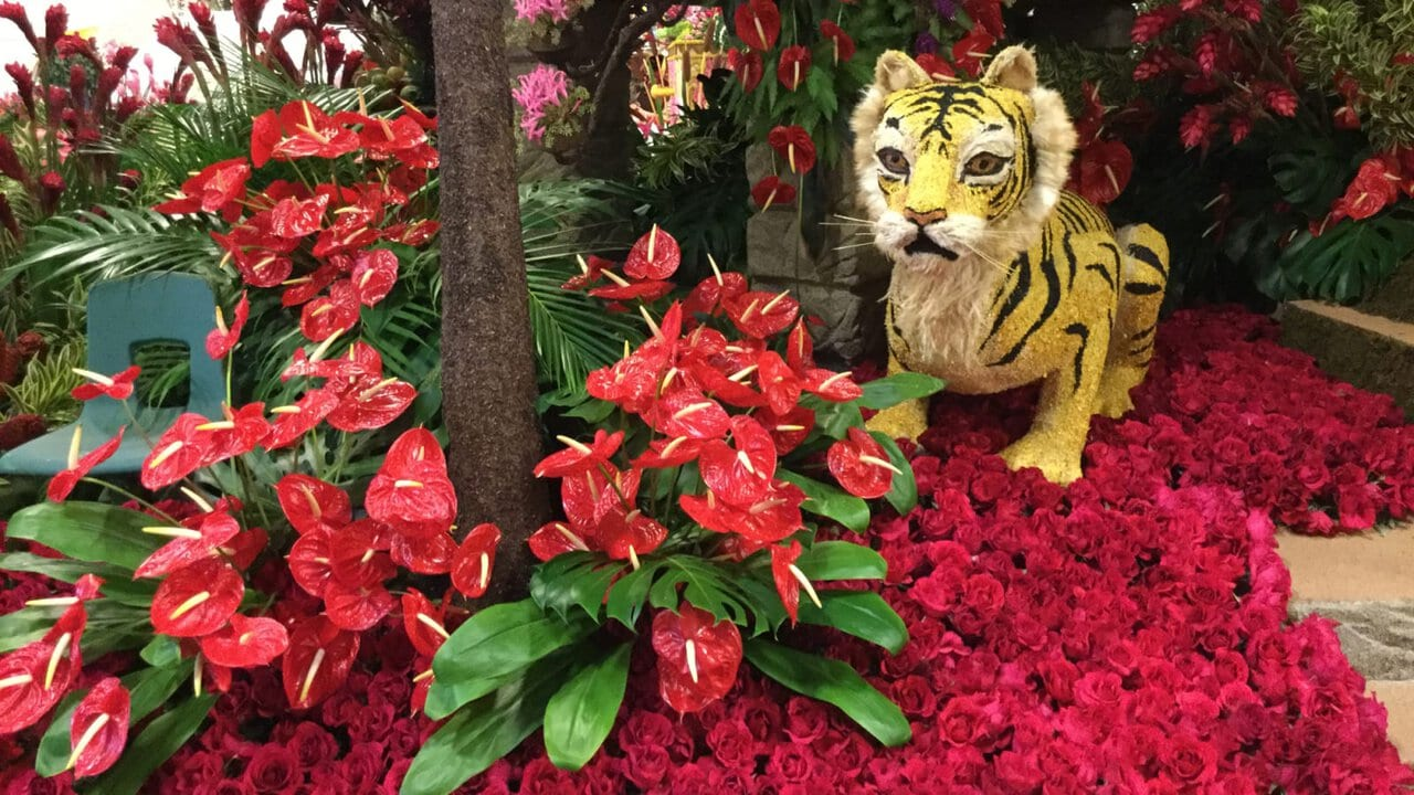 What's a $250,000 Rose Parade float really worth?
